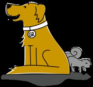 GR the data matching dog